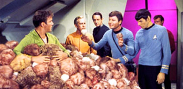Original Tribble From 'The Trouble With Tribbles' On Ebay